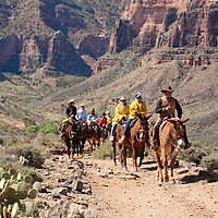 Riders coming to the end of Plateau Point on the tonto platform