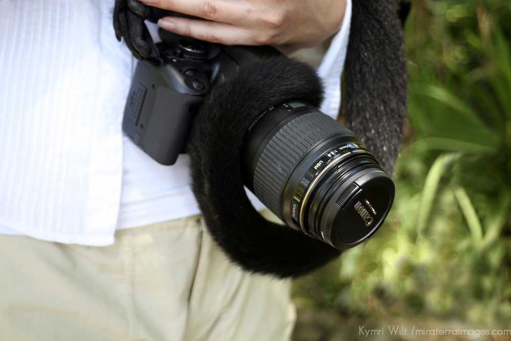 Central America, Latin America, Costa Rica. A Spider Monkey wrapped around a Canon SLR camera.