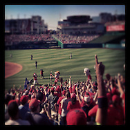 """An Instagram of fans celebrating """"Teddy"""" winning the President's Race at Nationals Park in Washington D.C."""