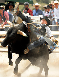 NEWS&GUIDE PHOTO / PRICE CHAMBERS.Bullrider Kyle Joss of Douglas tries to hang on at the Jackson High School Rodeo on Sunday afternoon at Teton County Fairgrounds.