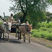 Stock-India-Nagpur