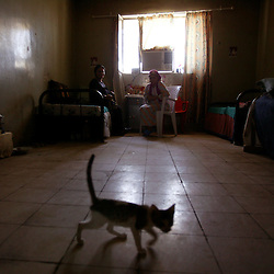 A kitten keeps aging women company at a retirement home in Sadr City, Baghdad, Iraq, July 22, 2003. Even though most families in Iraq care for their aging relatives at home, there is still a need for the facility, which is the largest of its kind in Baghdad housing 45 women and 87 men. The facility was not looted during the war, but it is still lacks some funding and is in need of medications for patients with chronic conditions such as heart disease and diabetes.