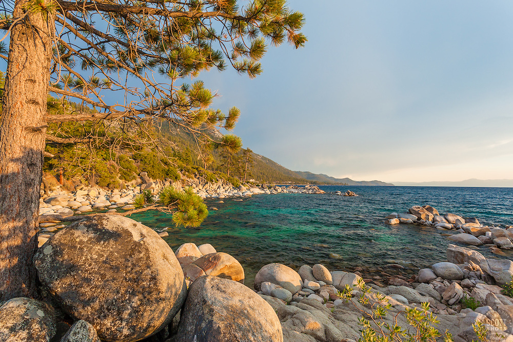 """""""Boulders at Lake Tahoe 46"""" - This tree and boulders were photographed just before sunset near Hidden Beach, Lake Tahoe."""