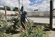 Amina Ali in the garden of the house of Santa Clara where she lives with her family.