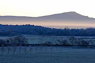 France, Languedoc Roussillon, Hérault, montagne de l'Hortus