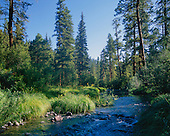 Creeks, Streams & Rivers