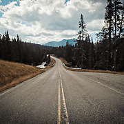 Hyalite Canyon Road. Near Bozeman, Montana. June, 2010