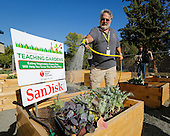 Milpitas High School American Heart Association Teaching Garden