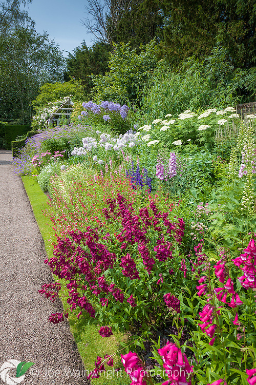 Vibrant colour inb the  Main Perennial Border at Wollerton Old Hall Garden.