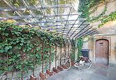 Bike Stand, Old Parsonage Hotel by James Wyman Architects