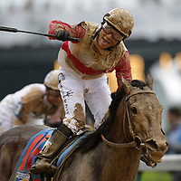 May 4, 2013 - Louisville, Kentucky, USA - Jockey Joel Rosario celebrates after taking Orb to win the 139th running of the Kentucky Derby at Churchill Downs. (Credit Image: © David Stephenson/ZUMA Press)