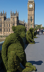 2016-05-24 Body Shop's moss Monkeys raise awareness of Bio-Bridges in Westminster