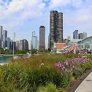 Cardinal Health RBC 2016 Camp Cardinal at Navy Pier Chicago. Photo by Alabastro Photography.