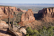 Independence Monument and Monument Canyon, Colorado National Monument, near Grand Junction and Fruita, Colorado, USA. This desert land is high on the Colorado Plateau dotted with pinion and juniper forests.