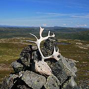 Sprøyten (948) og Nautfjellet (924), Skarvene og Roltdal nasjonalpark, Selbu. Sett fra Rødhåmmåren i Selbu, Meråker i bakgrunnen. Området er viktig for reindriften, Essand reinbeitedistrikt.  Utsikt fra fjellet Rødhammeren/Sprauten øst for Schulzhytta, i retning nordøst mot Meråker og Sverige.