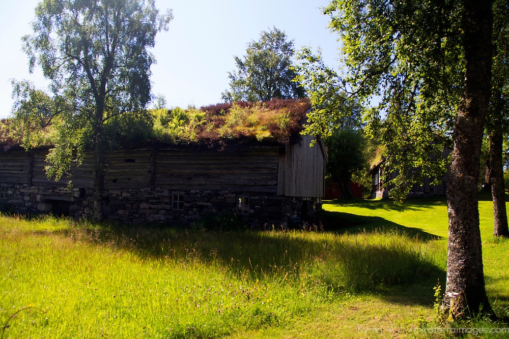 Europe, Norway, Molde. Sod Roof Building at Romsdal Museum in Molde.
