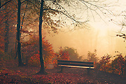 Bench at the fringe of a nearby forest overviewing the city of Wuppertal - on a day without fog :-)<br />