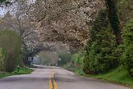 Further Lane, East Hampton, NY