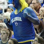 A Delaware fan painted in blue and yellow cheers from the stands first half of a 2013 Round Two Women's NCAA tournament game against No. 3 North Carolina and No. 6 Delaware Tuesday, March 26, 2013, at the Bob Carpenter Center in Newark Delaware.