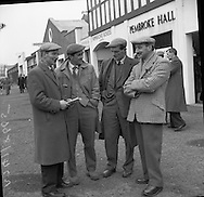 R.D.S. Bull Show.23.02.1961