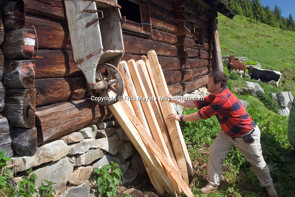 Duerrstein Alm, Stuhlfelden, National Park Hohe Tauern, Salzburgerland, Austria, May 2009. Frits collects wooden poles to mend the fences. The Duerrstein Alm is run by Theresia Bacher who grew up in one of the 3 huts on the alpine pasture. Photo by Frits Meyst/Adventure4ever.com