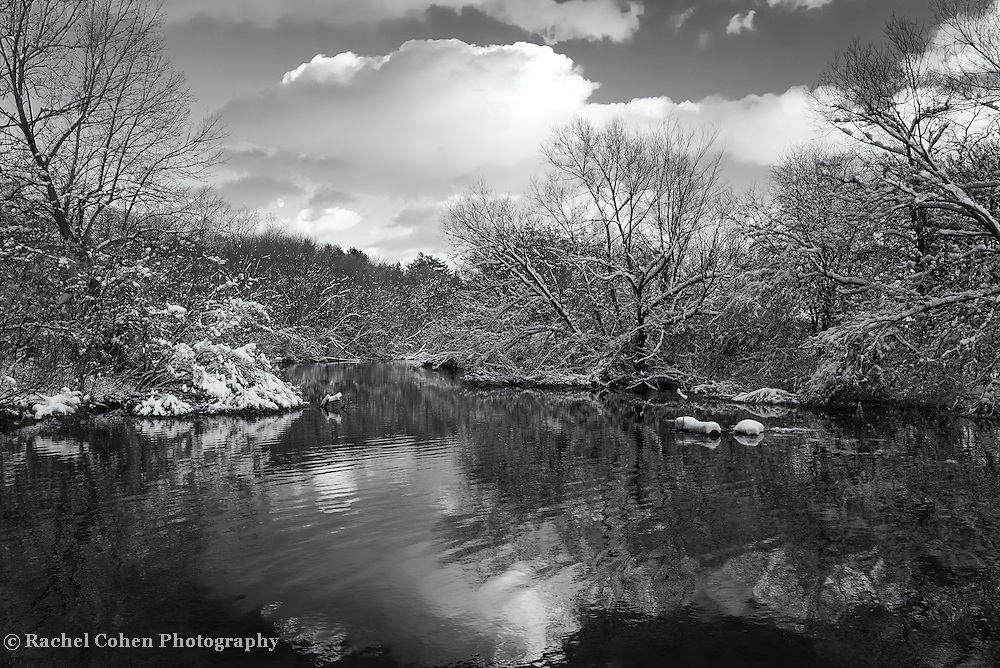 &quot;Glorious Winter Day&quot; mono<br />