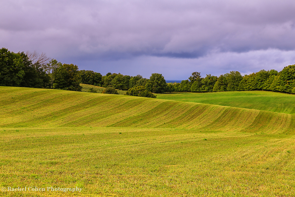 &quot;Farms of Charlevoix&quot;<br /> <br /> Scenic rural farm in Charlevoix Michigan!Rolling hills and lines!!<br /> <br /> Landscapes by Rachel Cohen
