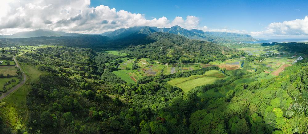 Hanalei Valley, Kauai, Hawaii, USA