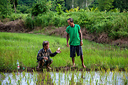 A worker, Con is paid 300 baht ($10) by Nien for a 10 hour work day in the rice fields of Nakhon Nayok, Thailand.<br />