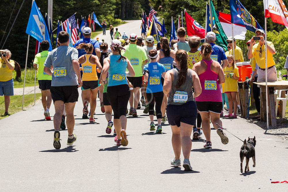 The Great Run Marathon and 6-Hour Race: