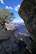 Brahma Temple from Bright Angel Point on the North Rim of the Grand Canyon