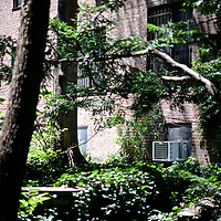 Residential garden between buildings. Jackson Heights was cross-influenced by several movements: New York housing reform at the close of the 19th century and the British Garden City Movement at the dawn of the 20th century. It was further influenced by urban housing innovations in Europe generally, and in Charlottenburg, Germany specifically.