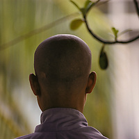 19 year old Tran Thi Thu, her head freshly shaved, begins life as a Buddhist nun at Pho Da Pagoda in Vietnam