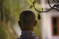 19 year old Tran Thi Thu, her head freshly shaved, begins life as a Buddhist nun at Pho Da Pagoda in Vietnam