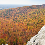 From atop Hanging Rock, you can view across a sea of autumn orange and red foliage to Moore's Wall, at Hanging Rock State Park in Stokes County, North Carolina, USA. (Panorama stitched from 7 images.) The eroded quartzite knob called Hanging Rock rises to 2150 feet elevation. The park is 30 miles (48 km) north of Winston-Salem, and approximately 2 miles (3.2 km) from Danbury. Hanging Rock State Park is located in the Sauratown Mountain Range, which is made up of monadnocks (or inselbergs, isolated hills) that are separated from the nearby Blue Ridge Mountains. Prominent peaks in the Sauratown range rise from 1,700 feet (520 m) to more than 2,500 feet (760 m) in elevation and stand in contrast to the surrounding countryside, which averages only 800 feet (240 m) in elevation. Named for the Saura Native Americans who were early inhabitants of the region, the Sauratown Mountains are the erosion-resistant quartzite remnants of mountains pushed up between 250 and 500 million years ago. Panorama stitched from 7 overlapping photos.