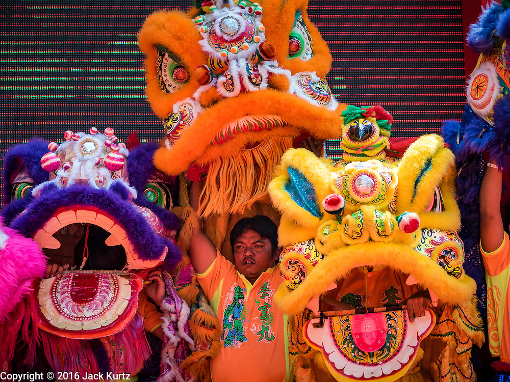 "08 FEBRUARY 2016 - BANGKOK, THAILAND:  Lion dancers perform in Bangkok's Chinatown district during the celebration of the Lunar New Year. Chinese New Year is also called Lunar New Year or Tet (in Vietnamese communities). This year is the ""Year of the Monkey."" Thailand has the largest overseas Chinese population in the world; about 14 percent of Thais are of Chinese ancestry and some Chinese holidays, especially Chinese New Year, are widely celebrated in Thailand.      PHOTO BY JACK KURTZ"