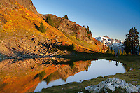 Mt. Shuksan, Fall; Mt. Baker Wilderness Area; North Cascades; WA; Yellow Aster Butte