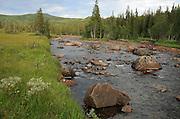 elva Rotla. Skarvene og Roltdalen nasjonalpark.