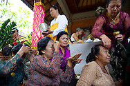 Traditional Balinese Wedding ceremony in Kayu Putih (White Wood)