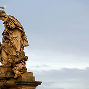 "SHOT 11/21/08 8:08:07 AM - A seagull atop one of the many statues that line the Charles Bridge in Prague, Czech Republic. Doing so is said to bring good luck. The alley of 30 mostly baroque statues and statuaries situated on the balustrade forms a unique connection of artistic styles with the underlying gothic bridge. Most sculptures were erected between 1683 and 1714. They depict various saints and patron saints venerated at that time. The most prominent Bohemian sculptors of the time took part in decorating the bridge, such as: Matthias Braun, Jan Brokoff and his sons Michael Joseph and Ferdinand Maxmilian. Prague is the capital and largest city of the Czech Republic. Its official name is Hlavní m?sto Praha, meaning Prague, the Capital City. Situated on the River Vltava in central Bohemia, Prague has been the political, cultural, and economic centre of the Czech state for over 1100 years. The city proper is home to more than 1.2 million people, while its metropolitan area is estimated to have a population of over 1.9 million. Since 1992, the extensive historic centre of Prague has been included in the UNESCO list of World Heritage Sites. According to Guinness World Records, Prague Castle is the largest ancient castle in the world. Nicknames for Prague have included ""the mother of cities"", ""city of a hundred spires"" and ""the golden city"". Since the fall of the Iron Curtain, Prague has become one of Europe's (and the world's) most popular tourist destinations. It is the sixth most-visited European city after London, Paris, Rome, Madrid and Berlin. Prague suffered considerably less damage during World War II than some other major cities in the region, allowing most of its historic architecture to stay true to form. It contains one of the world's most pristine and varied collections of architecture, from Art Nouveau to Baroque, Renaissance, Cubist, Gothic, Neo-Classical and ultra-modern..(Photo by Marc Piscotty / © 2008)"