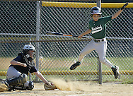 Minisink Valley's Michael Herrara leaps to avoid a pitch as the ball bounces past New Windsor catcher Sean Hofving during a District 19 Little League minor boys' baseball all-star game at the Town of Wallkill on Thursday, July 16, 2009.