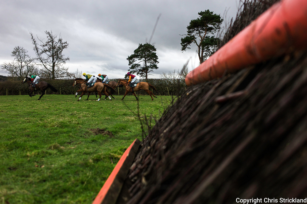Horses in action during the Ladies Open Race at the Jedforest Point to Point.