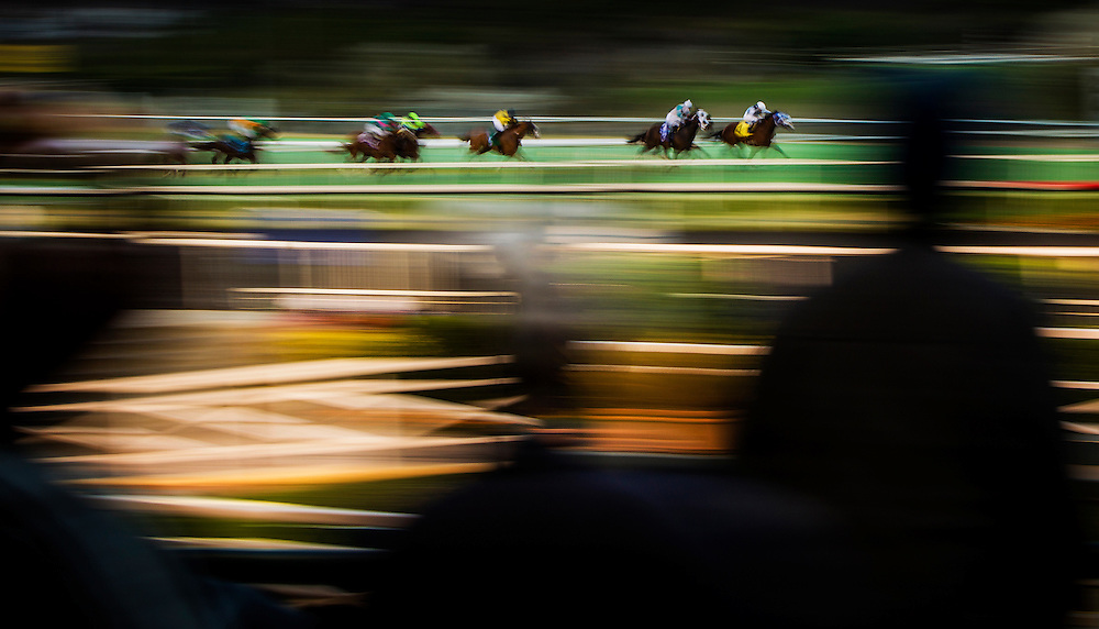 Horses Race at Betfair Hollywood Park in Inglewood, California . The Track is set to close on December 22, 2013 after operating for 75 Years.(Alex Evers/ Eclipse Sportswire)