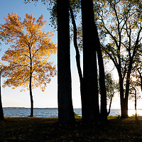 .2012 Fall colors in Madison, Wisconsin.