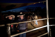 Brunette Downs Cattle Station is situated on the Barkley tablelands in Australia's Northern Territory. One of Australia's largest cattle stations..Helena Grieser from Germany (centre)