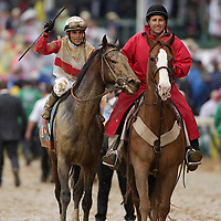 May 4, 2013 - Louisville, Kentucky, USA - Orb and Jockey Joel Rosario head to the winner's circle after winning the 139th running of the Kentucky Derby at Churchill Downs. (Credit Image: © David Stephenson/ZUMA Press)