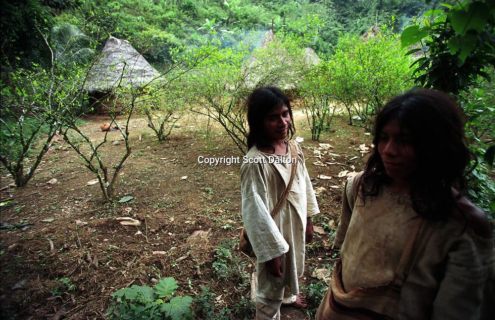 the kogi indians As of 1997, it is estimated there are 1,600 kogi's left where do the kogi live kogi village, sierra nevada de santa marta, colombia the kogi live in the higher regions of the sierra nevada.