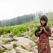 Travel photography from Kashmir, India. Images from Kashmir Great Lakes Trek in the Himalayas of Kashmir, India.
