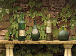 Vintage wine bottles against a wall of grape leaves
