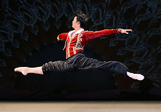 8 MARCH 2015 The Russian Ballet Icons